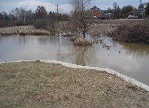 В Наро-Фоминском городском округе планируется расчистка участка реки Лоши